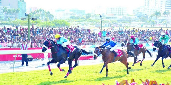 Mauritius Maiden Cup